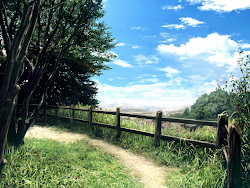 outdoor anime background scenery landscape forest